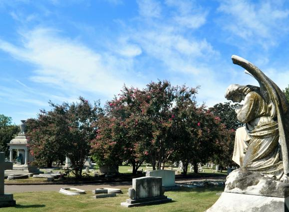 Statue of angel with wings in an historic cemetery